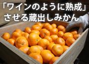 マルヨ農園の蔵出し柑橘の倉庫